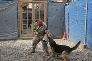 Steve Rudock and military dog, Rex, run practice drills at Camp Eggers in Kabul, Afghanistan, 2006. Photo courtesy of Steven P. Rudock